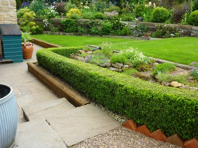 Garden today 1.6.1402