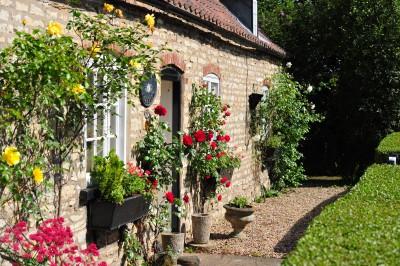 Dorothy's cottage (1)