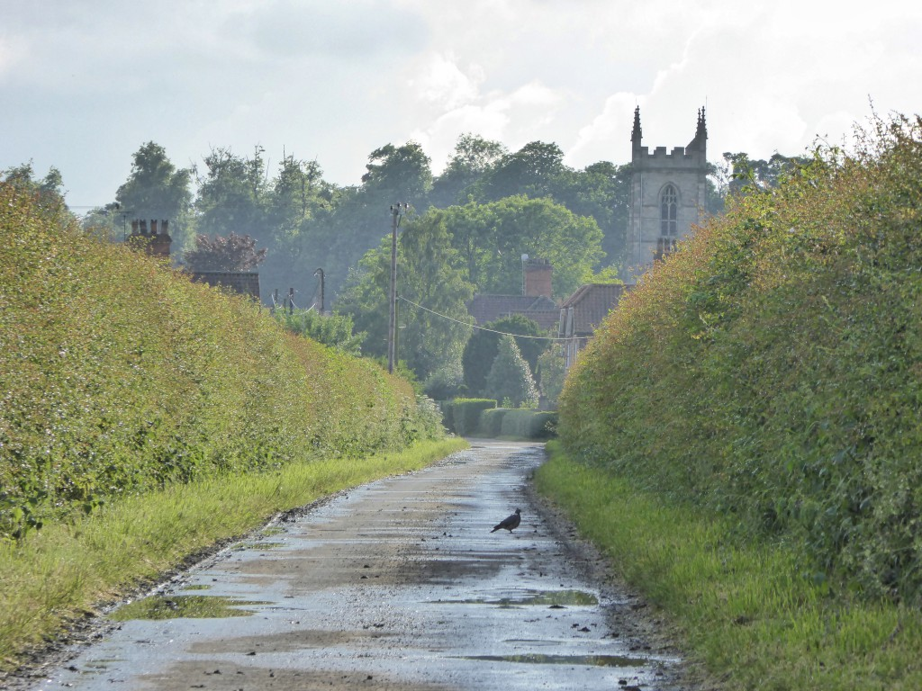 Around Appleby village after the rain